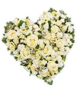 whiteroseheart